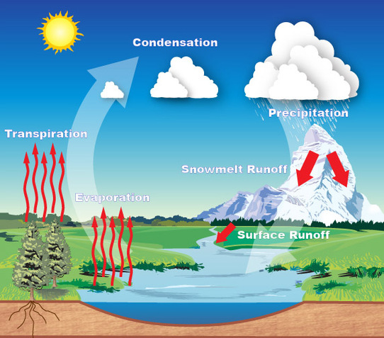 hydrologic and carbon cycles